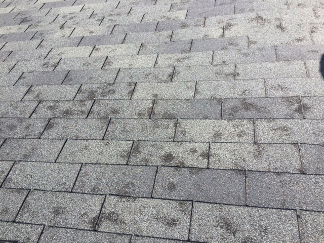 Colorado hail roof damage
